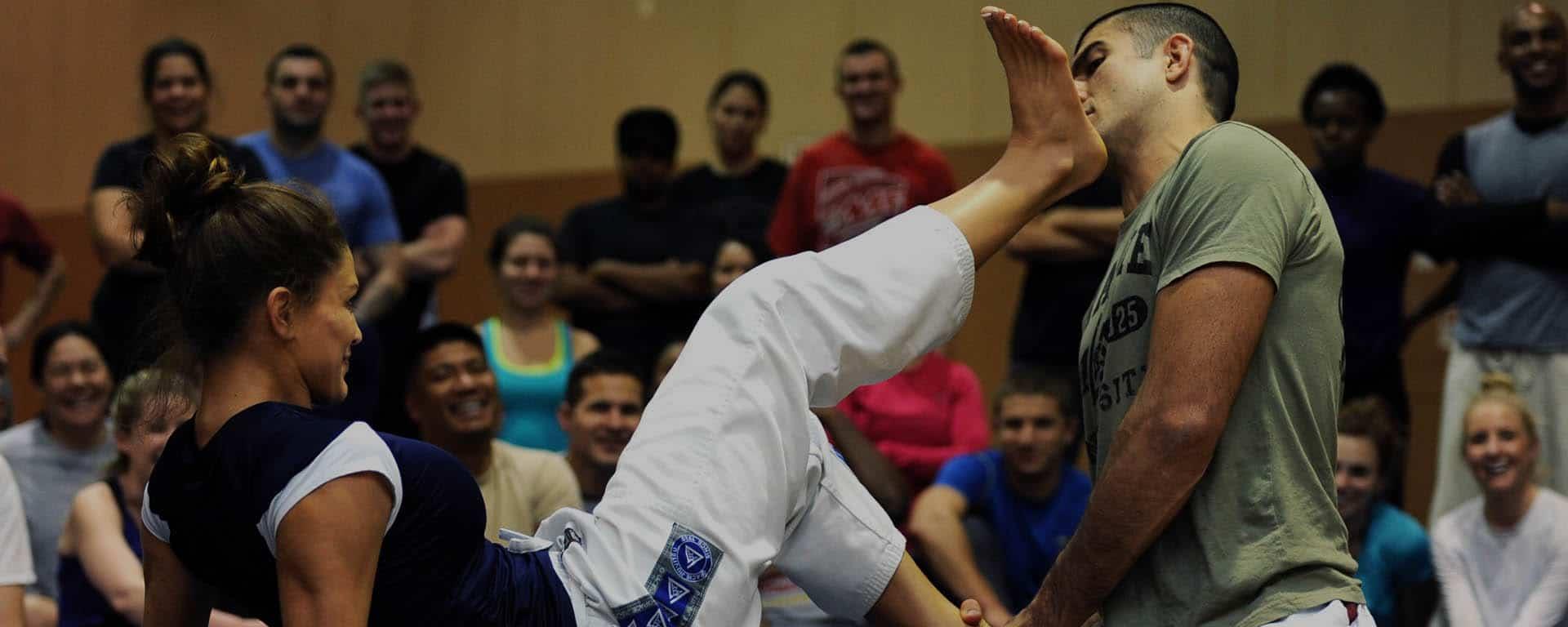 Nihon Tai Jitsu Paris Kikentaï