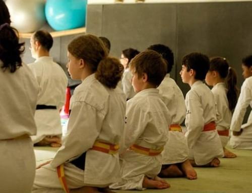 Stage karaté et multi-activités enfant de 6 à 12 ans