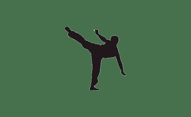 Nouveaux Cours de Karaté aux gymnases Michelet et Macdonald