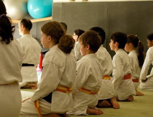 STAGE d'ÉTÉ | Karaté Multi-Activités Enfants – Juillet