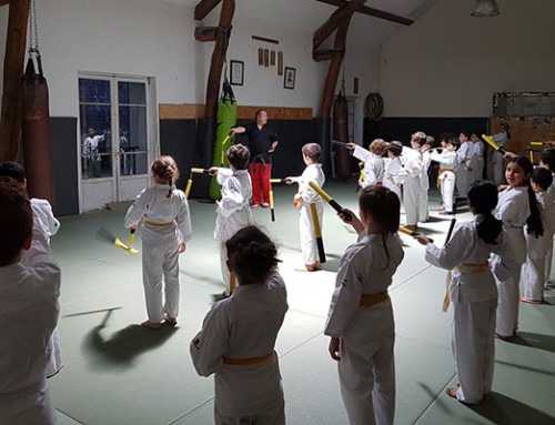 Stage de Nunchaku Janvier 2020 | Album Photo