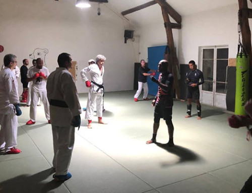 Entraînement Karaté Mix MMA 28 Juillet – Album Photo