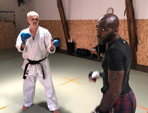 Entrainement spécial de karaté MMA avec Yan Sulpice mardi 28 juillet